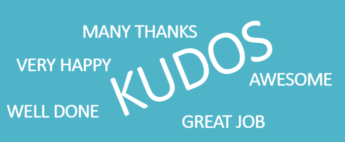 Kudos you did an awesome job…